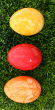 Eastereggs on grass. Three eastereggs on grass on white background Royalty Free Stock Images