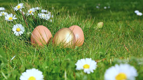 Easterl eggs Royalty Free Stock Photos