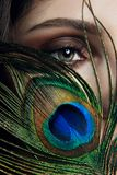 Eastern Arab woman with a peacock feather in her hands near her face. Beauty fashion makeup Arab women, big beautiful eyes. royalty free stock image