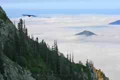 Eastern Black Sea Mountains Royalty Free Stock Photos