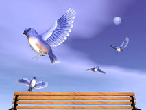 Eastern blue birds upon a bench - 3D render. Several beautiful easter blue birds flying upon a wood bench by cloudy full moon night Royalty Free Stock Images