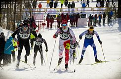 Eastern Canadian Championships Royalty Free Stock Photo