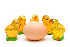 Eastern chocolate chicks admiring an egg. Eastern chocolate chick group admiring an egg, isolated picture Royalty Free Stock Photo