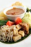 Eastern cuisine Royalty Free Stock Photos