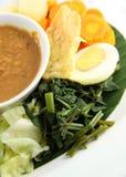 Eastern cuisine Royalty Free Stock Photo