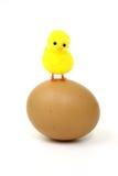 Eastern egg Stock Photos