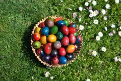 Eastern eggs on the grass. Bulgarian eastern eggs colourful on the grass in a basket Royalty Free Stock Photos