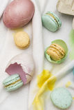 Eastern eggs and macarons Stock Images