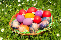 Eastern eggs Royalty Free Stock Images
