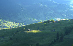 Eastern european mountain scenery. In summer with patch of sunlight Stock Photography