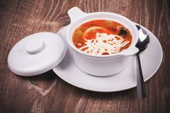 Eastern european soup rassolnik in bowl. With spoon Royalty Free Stock Photography