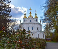 Eastern facade of Assumtion Cathedral in Poltava, flowering bush Stock Photography