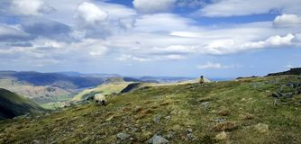 The Eastern Fells from Thronthwaite Crag Royalty Free Stock Images
