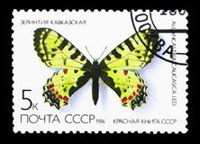 Eastern Festoon (Allancastria caucasica), Butterflies serie, cir. MOSCOW, RUSSIA - MARCH 31, 2018: A stamp printed in USSR (Russia) shows vector illustration