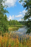 Eastern Finland. Very beautiful Eastern Finland with clear lakes and wonderful forests stock image