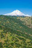 Eastern flank of Mount Hood in Oregon. Eastern side of snow covered Mount Hood in Oregon Royalty Free Stock Images
