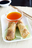 Eastern meat rolls (China and Japan). Photo taken on rolls with sauce Japanese restaurant, the focus is where the coils touch the sauce Royalty Free Stock Photos