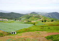 Eastern mountain Landscape in Thailand Stock Photo
