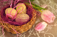Eastern nest and a tulip Stock Photos