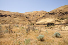 Eastern Oregon Desert Royalty Free Stock Photos