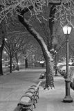 Eastern Parkway Streetlamp in Snow (B&W) Royalty Free Stock Photography