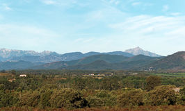 Eastern plain of Corsica Stock Photography