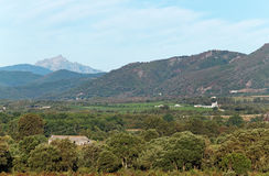 Eastern plain of Corsica Royalty Free Stock Images