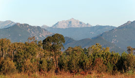 Eastern plain of Corsica island Royalty Free Stock Photos
