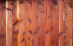 Eastern Red Cedar Fence Royalty Free Stock Photography