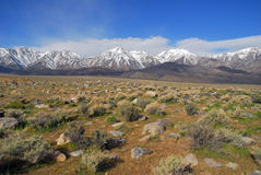 The eastern Sierra. A view of the Sierra Nevada from the east Stock Photography