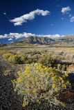 Eastern sierra mountain Stock Image