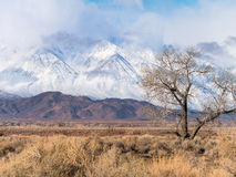 Eastern Sierra Nevada Range Royalty Free Stock Photos