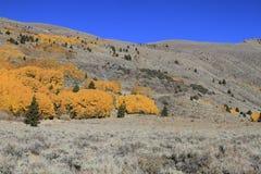 Eastern Sierras in fall Stock Image