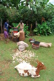 Eastern Uganda. A family of coffee farmers begins to husk their coffee beans Stock Photo