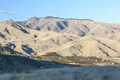 Eastern Washington foothills and orchards. Apple orchards of Cascade Mountain foothills near Wenatchee and Monitor, Washington Stock Images