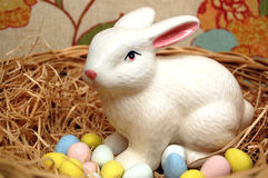 Easters Eggs with Bunny Stock Photography