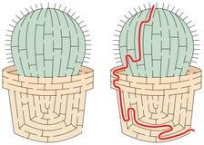 Easy cactus maze Stock Images