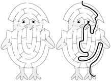 Easy chicken maze. For younger kids with a solution in black and white Royalty Free Stock Photo