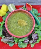 Easy Chili Verde Royalty Free Stock Photography