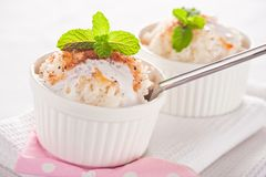 Easy dessert - milk rice Royalty Free Stock Photos