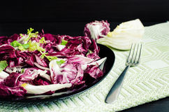 Easy diet chicory salad with fennel. On dark wooden background with fork. Italian bitter and spicy tasted red chicory radicchio salad. Vegetarian Food. Healthy Royalty Free Stock Images