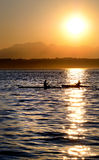 Sunset Rowers on Puget Sound with Olympic Mountains Royalty Free Stock Images