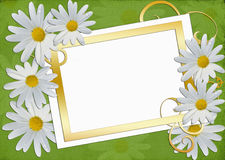 Easy frame for photo with daisy Stock Photo