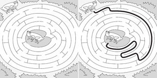 Easy frogs maze. For younger kids with a solution in black and white Royalty Free Stock Photo