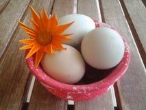 Easy happy Easter creations garden smile colours eggs flower decoration. Easy happy Easter creations for the garden table Stock Photos