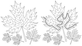 Easy maple leaf maze. For kids with a solution in black and white Stock Photos