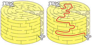 Easy mice maze. For younger kids with a solution Stock Image