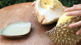Easy Serving Thai Durian Fruit stock video footage