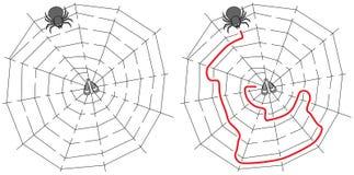 Easy spider maze Stock Photo