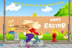 Easter Bunny cycling Royalty Free Stock Photos